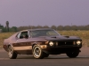 1973 Ford Mustang Mach 1 (c) Ford