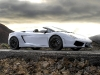 2009 Lamborghini Gallardo LP560-4 Spyder (c) Lamborghini