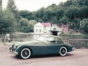 (c) Jaguar